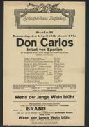 Don Carlos : Infant von Spanien